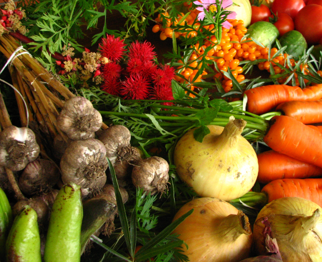 Mercato contadino Ego - Frutta e verdura a Km 0